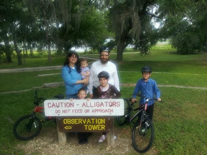 Caution - Alligators